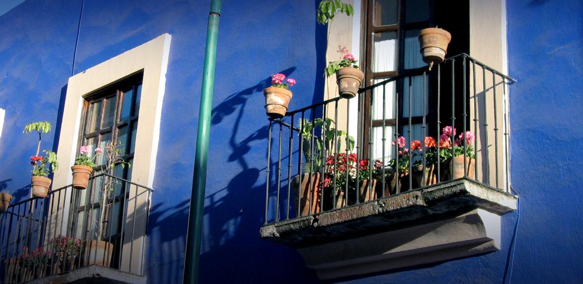 Rosewood Puebla