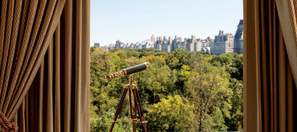 Ritz Carlton Suite, Deluxe Park View Suite