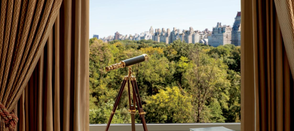 Ritz Carlton New York Central Park - Views